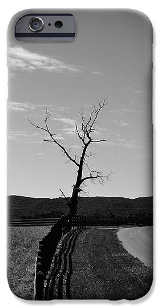 Farm Stand iPhone Cases - Lonesome Tree With Vignette iPhone Case by Rebecca Stowers