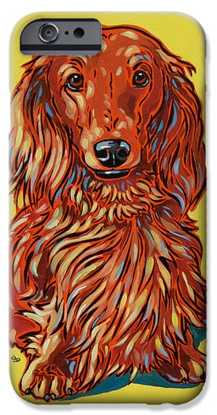 Nadi Spencer iPhone Cases - Long Haired Dachshund iPhone Case by Nadi Spencer