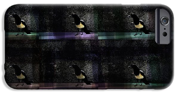 Crows iPhone Cases - Long-tailed crow iPhone Case by Damijana Cermelj