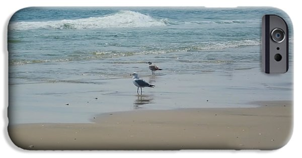 Seagull iPhone Cases - Looking Out into the Sea iPhone Case by Bill Cannon