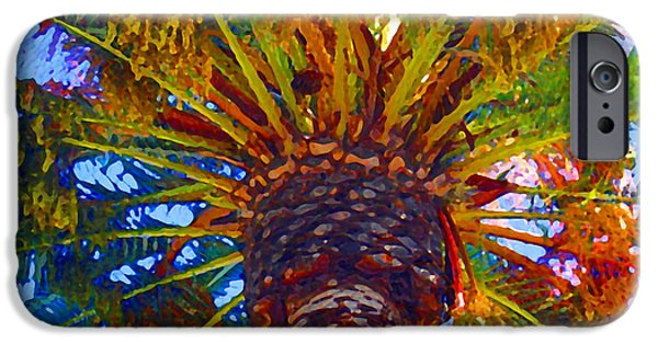 Tropical Plant iPhone Cases - Looking up at Palm Tree  iPhone Case by Amy Vangsgard