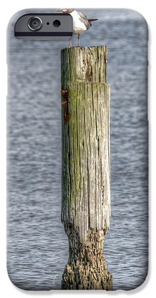 Old Barns iPhone Cases - Lookout Post iPhone Case by Bo Lamey