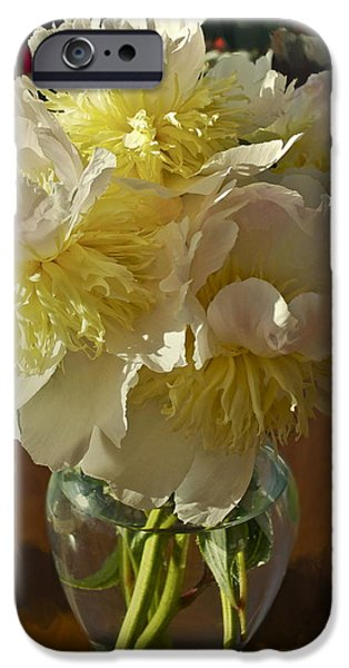 Lost Treasures iPhone Case by Gwyn Newcombe