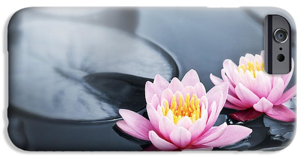 Ponds iPhone Cases - Lotus blossoms iPhone Case by Elena Elisseeva