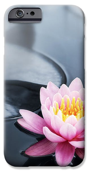 Lotus blossoms iPhone Case by Elena Elisseeva