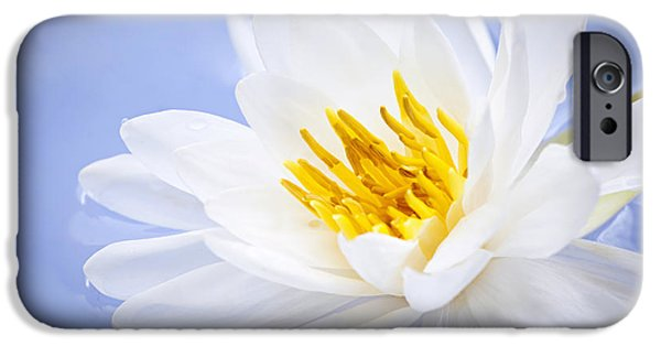 Waterlily iPhone Cases - Lotus flower iPhone Case by Elena Elisseeva