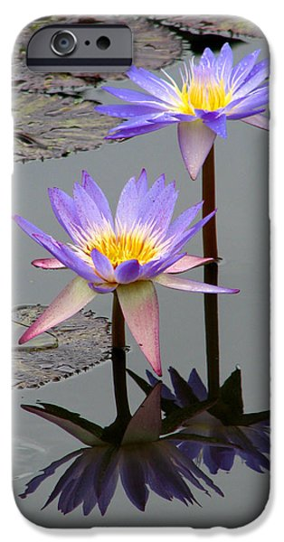 Floral Photographs iPhone Cases - Lotus Reflection 4 iPhone Case by David Dunham