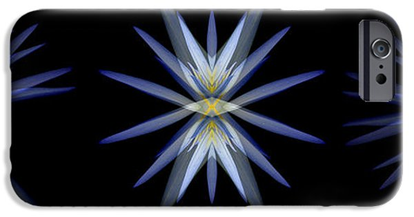 Nymphaea iPhone Cases - Blue Lotus Transitions 4-5-6 iPhone Case by Wayne Sherriff