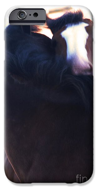 Love iPhone Case by Linda Knorr Shafer