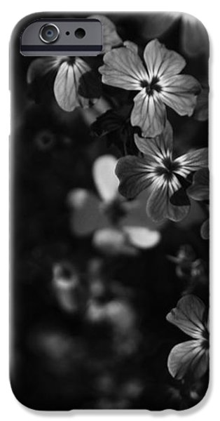 Love Lost iPhone Case by Laurie Search