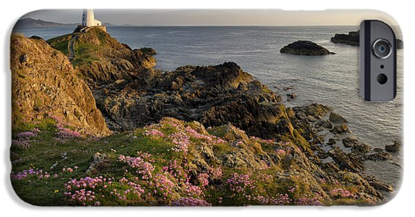Couple iPhone Cases - Lovers Island Wildflower Panorama iPhone Case by Matthew Train