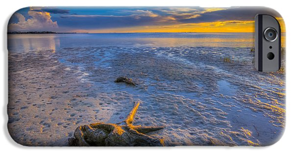 St. Petersburg iPhone Cases - Low Tide Stump iPhone Case by Marvin Spates