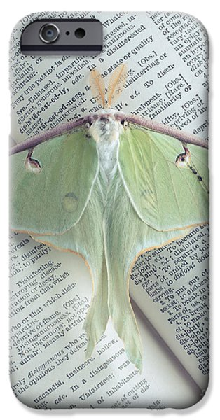 Wild Animals iPhone Cases - Luna Moth on Book iPhone Case by Edward Fielding