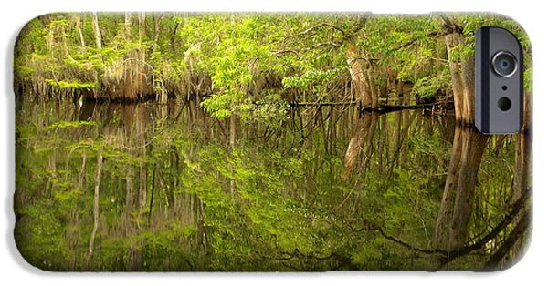 Chiefland iPhone Cases - Lush Green Reflections At Manatee Springs iPhone Case by Adam Jewell