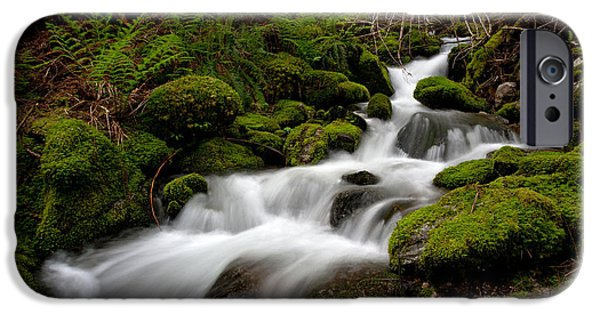 North Cascades iPhone Cases - Lush Stream iPhone Case by Mike Reid