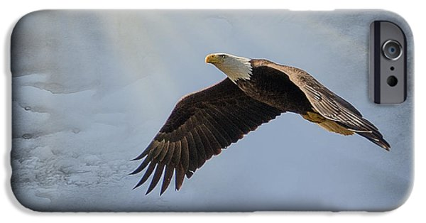 Flight Pyrography iPhone Cases - Magestic Flight iPhone Case by Shirley Tinkham