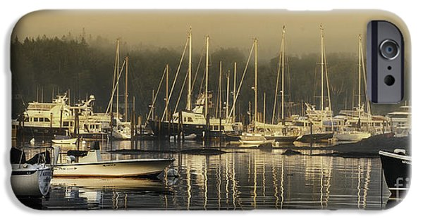 Mid-coast Maine iPhone Cases - Magical Light of Mt Desert Island iPhone Case by Thomas Schoeller