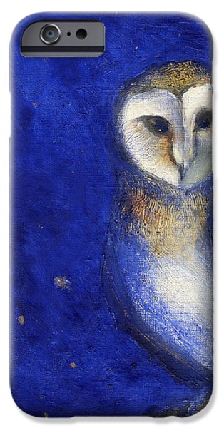 Colored Owls iPhone Cases - Magical Night One iPhone Case by Nancy Moniz