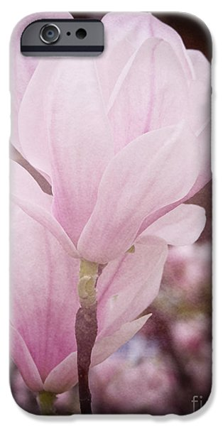 Magnolia iPhone Case by Angela Doelling AD DESIGN Photo and PhotoArt