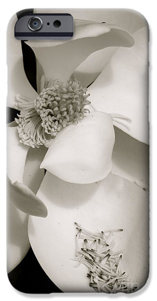 Drama iPhone Cases - Magnolia Drama in Black and White iPhone Case by Carol Groenen