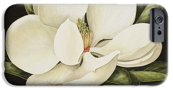 Best Sellers -  - Fauna iPhone Cases - Magnolia Grandiflora iPhone Case by Jenny Barron