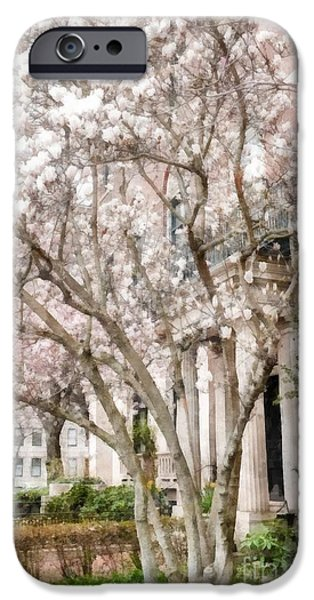 Back Bay iPhone Cases - Magnolias in Back Bay iPhone Case by Edward Fielding