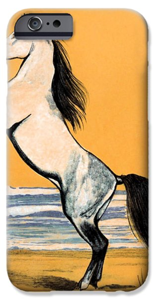 Drawing Of A Horse iPhone Cases - Mail Beauty iPhone Case by Cheryl Poland