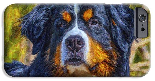 Dogs iPhone Cases - Majestic  iPhone Case by Jill Bingham-Daniels