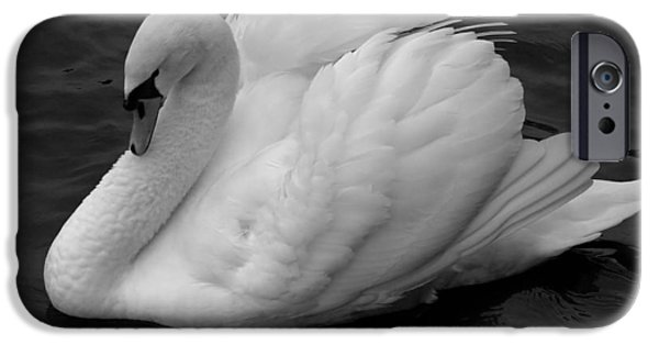 Swans... iPhone Cases - Majestic Mute Swan iPhone Case by Pierre Leclerc Photography