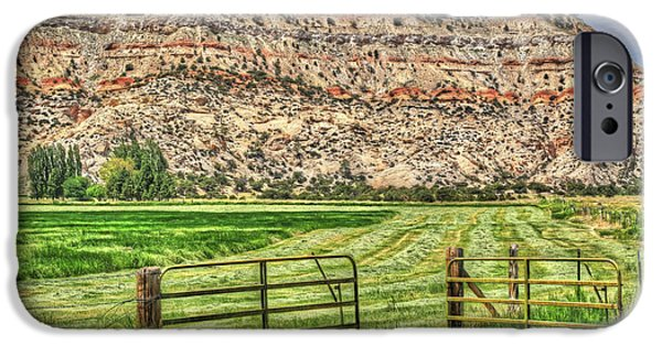 Hayfield iPhone Cases - Make Hay While the Sun Shines iPhone Case by Donna Kennedy