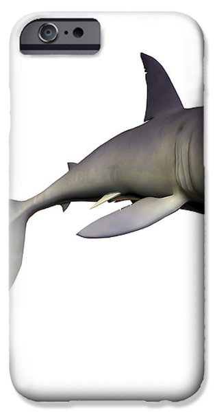 Mako Shark iPhone Case by Corey Ford