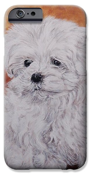Maltese Puppy iPhone Cases - Maltese puppy iPhone Case by Graciela Castro