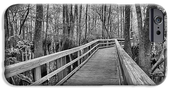 Manatee iPhone Cases - Manatee Springs Black And White Boardwalk iPhone Case by Adam Jewell