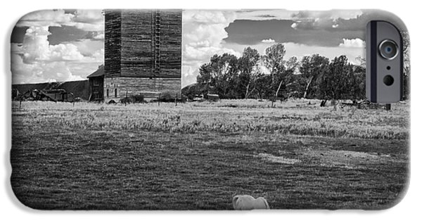 Agricultural iPhone Cases - Mancos Grain Elevator iPhone Case by Priscilla Burgers