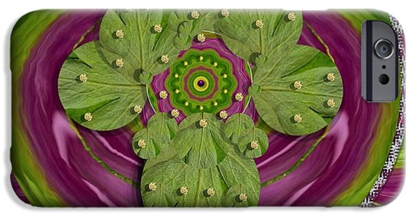 Tibetan Buddhism iPhone Cases - Mandala art iPhone Case by Pepita Selles