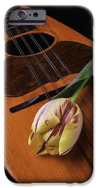 Hand-made iPhone Cases - Mandolin And Tulip iPhone Case by Garry Gay