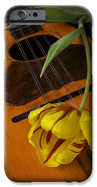 Vivid iPhone Cases - Mandolin With Red And Yellow Tulip iPhone Case by Garry Gay