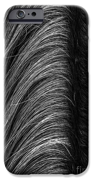 Gray Hair iPhone Cases - Mane Street iPhone Case by James Aiken