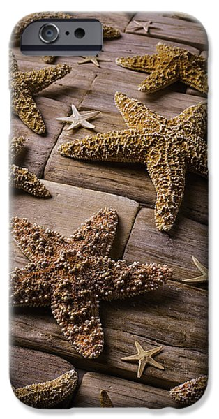 Starfish iPhone Cases - Many Stars iPhone Case by Garry Gay