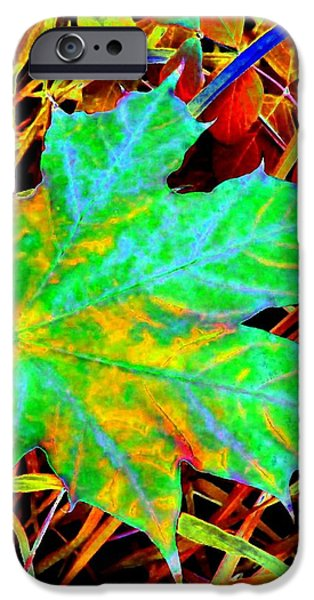 Maple Mania 21 iPhone Case by Will Borden