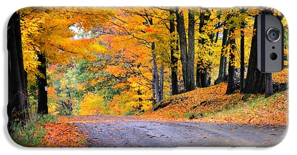 Scenic Drive iPhone Cases - Maples of Rupert Vermont iPhone Case by Thomas Schoeller