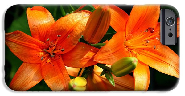 Floral iPhone Cases - Marmalade Lilies iPhone Case by David Dunham
