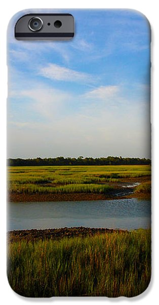 Marshland Charleston South Carolina iPhone Case by Susanne Van Hulst