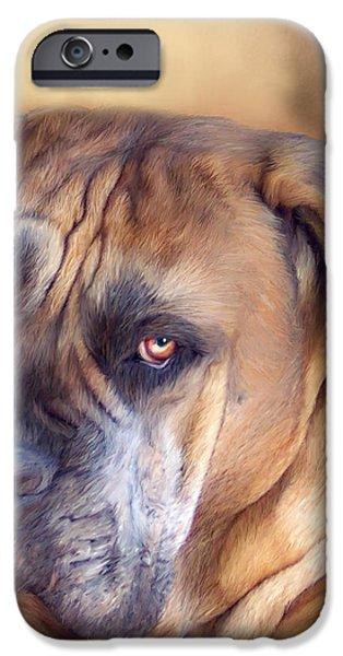 Mastiff Portrait iPhone Case by Carol Cavalaris