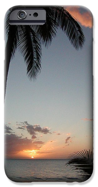 Palm Tree Greeting Cards iPhone Cases - Maui Sunset iPhone Case by Dustin K Ryan