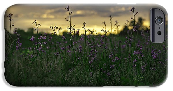 Meadow Photographs iPhone Cases - May Flowers  iPhone Case by Trish Kusal