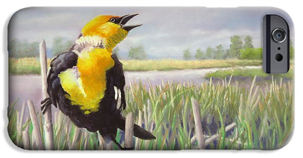 Bulls Pastels iPhone Cases - May Morning at Moonans Marsh iPhone Case by Marcus Moller