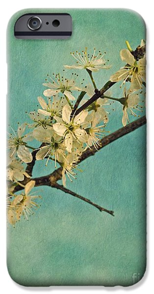 Flora iPhone Cases - Mayblossom iPhone Case by Priska Wettstein