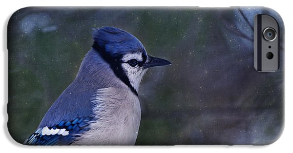 Bluejay iPhone Cases - Me Minus You - Blue iPhone Case by Evelina Kremsdorf