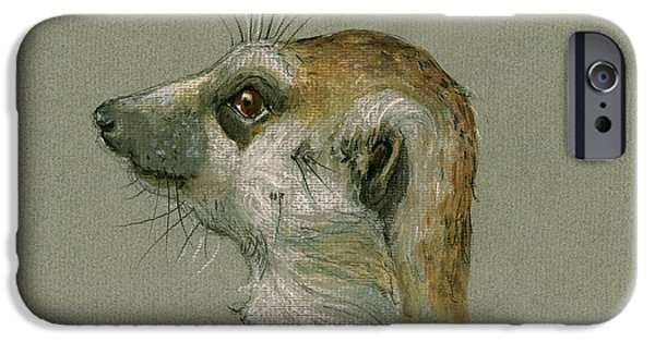 Safari Prints iPhone Cases - Meerkat or Suricate painting iPhone Case by Juan  Bosco